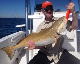 Hernando beach deep sea grouper fishing trips and offshore for Wildwood fishing charters